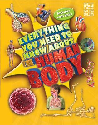 Everything You Need to Know About the Human Body by Dr. Patricia MacNair