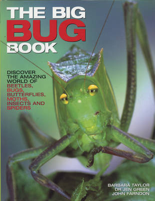The Big Bug Book by Jen Green, Barbara Taylor, John Farndon