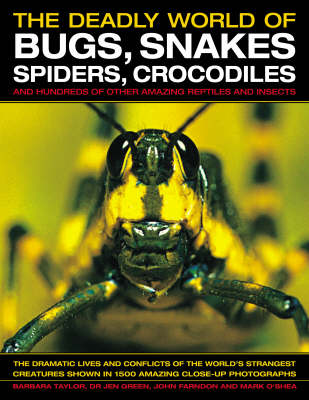 The Deadly World of Bugs, Snakes, Spiders, Crocodiles and Hundreds of Other Amazing Reptiles and Insects Discover the Amazing World of Reptiles and Bugs, Featuring More Than 1500 Fabulous Wildlife Pho by Barbara Taylor, Dr Jen Green, John Farndon