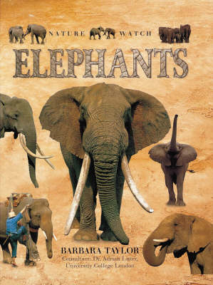 Elephants by Barbara Taylor