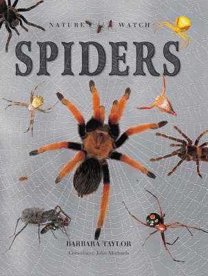 Spiders by Barbara Taylor