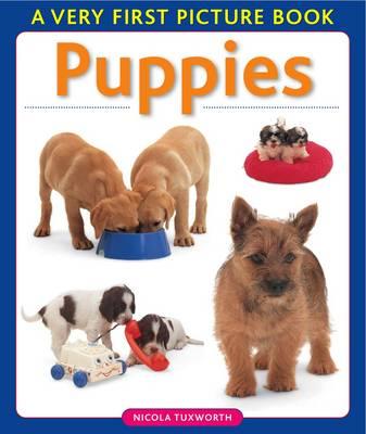 Puppies by Nicola Tuxworth