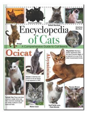 Encyclopedia of Cats Encyclopedia Omnibus by