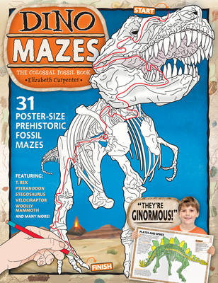 Dinomazes The Colossal Fossil Book by Elizabeth Carpenter