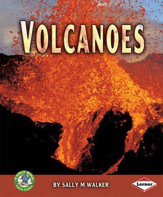 Volcanoes by Sally M. Walker
