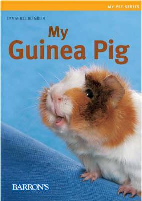 My Guinea Pig by Immanuel Birmelin