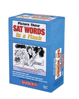 Picture These Sat Words in a Flash by Philip Geer