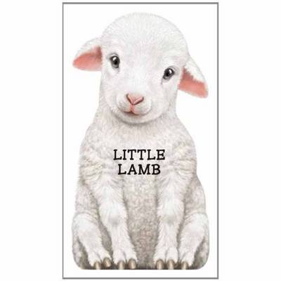 Little Lamb Look at Me by L. Rigo