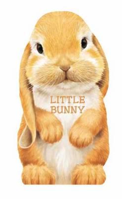 Little Bunny Mini Look at Me Books by L. Rigo