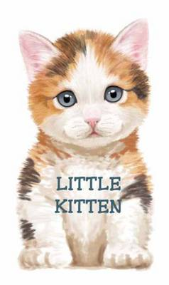 Little Kitten Look at Me Books by L. Rigo
