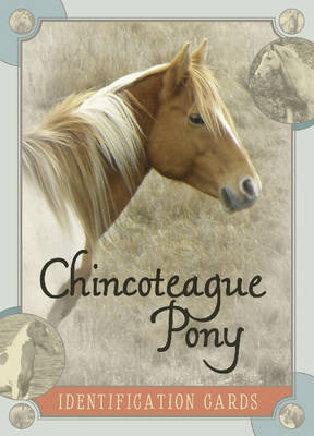 Chincoteague Pony Identification Cards by Lois Szymanski