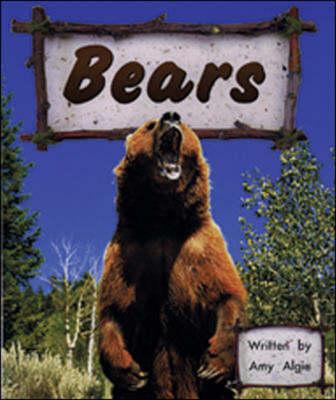 Bears by Amy Algie