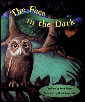 The Face in the Dark Set A Emergent/Early Guided Readers by Amy Algie