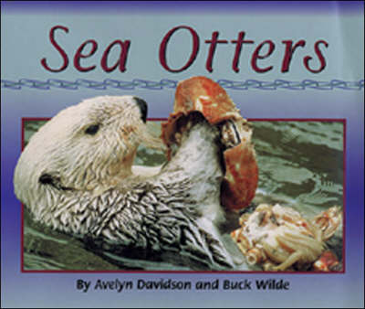 Sea Otters Moon Rising by Avelyn Davidson, Buck Wilde