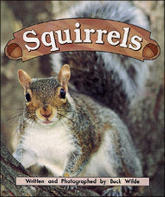 Squirrels Night Crickets by Buck Wilde