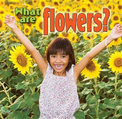 What are Flowers? by Kelley MacAulay