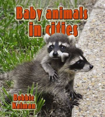 Baby Animals in Cities by Bobbie Kalman