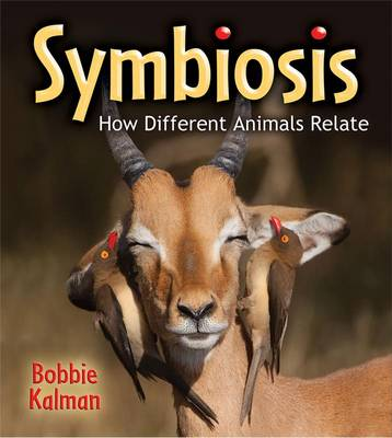 Symbiosis How Different Animals Relate by Bobbie Kalman