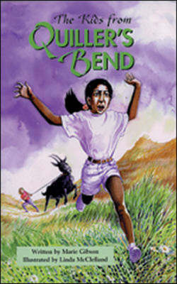 The Kids from Quiller's Bend When Things Go Wrong by Marie Gibson