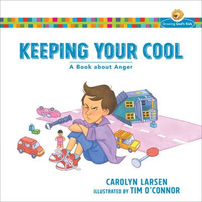 Keeping Your Cool A Book about Anger by Carolyn Larsen