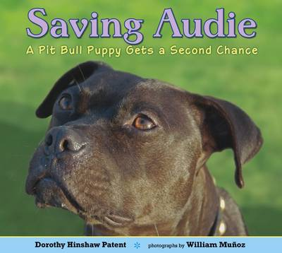 Saving Audie A Pit Bull Puppy Gets a Second Chance by Dorothy Hinshaw Patent, William Munoz