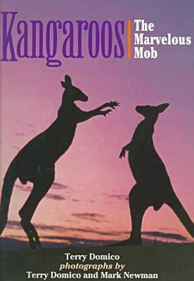 Kangaroos by Terry Domico