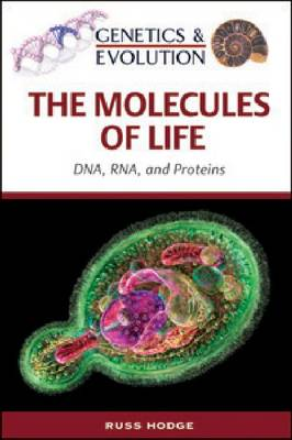 The Molecules of Life DNA, RNA and Proteins by Russ Hodge