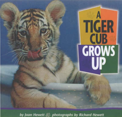 A Tiger Cub Grows Up by Joan Hewett, Richard Hewett