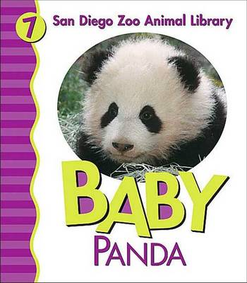 Baby Panda by Patricia A. Pingry