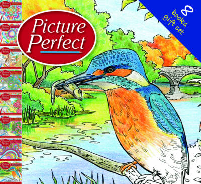 Picture Perfect Slipcase by
