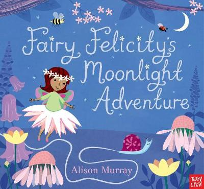 Fairy Felicity's Moonlight Adventure by Alison Murray, Nosy Crow