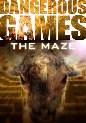 Dangerous Games: The Maze by Sue Graves