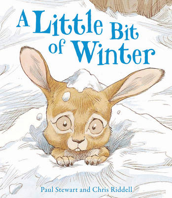 A Little Bit of Winter by Paul Stewart