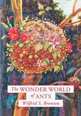 The Wonder World of Ants by Wilfrid S Bronson