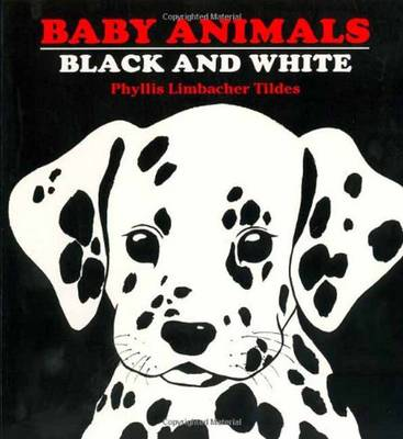 Baby Animals Black And White by Phyliss Limbacher Tildes