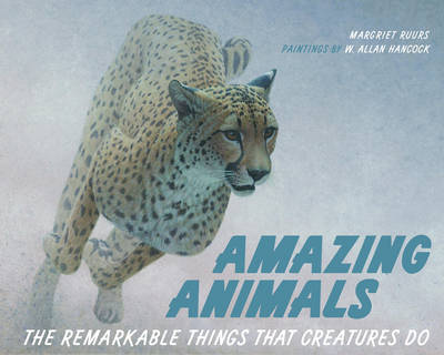 Amazing Animals The Remarkable Things That Creatures Do by Margriet Ruurs