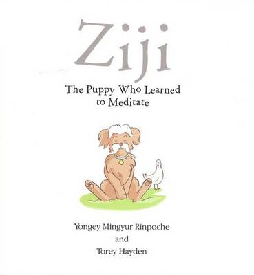 Ziji The Puppy Who Learned to Meditate by Torey L. Hayden, Yongey, Rinpoche Mingyur
