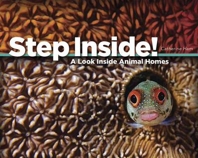 Step Inside! A Look Inside Animal Homes by Catherine Ham