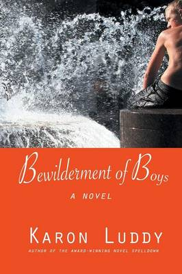 Bewilderment of Boys by Karon Gleaton Luddy