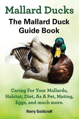 Mallard Ducks by Harry Goldcroft