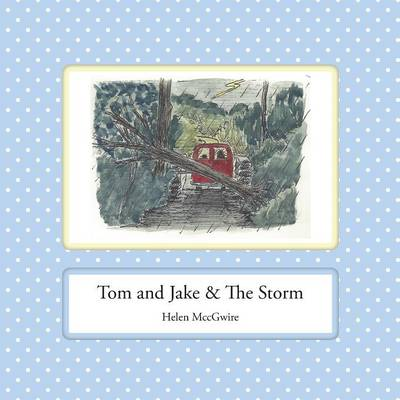 Tom and Jake & the Storm by Helen MccGwire