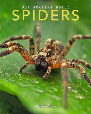 Spiders Amazing Pictures & Fun Facts on Animals in Nature by Kay De Silva