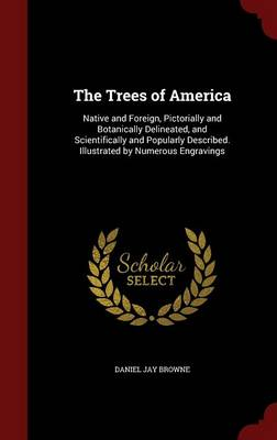 The Trees of America Native and Foreign, Pictorially and Botanically Delineated, and Scientifically and Popularly Described. Illustrated by Numerous Engravings by Daniel Jay Browne