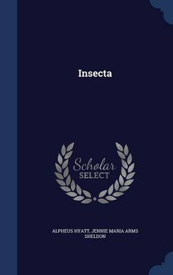 Insecta by Alpheus Hyatt, Jennie Maria Arms Sheldon
