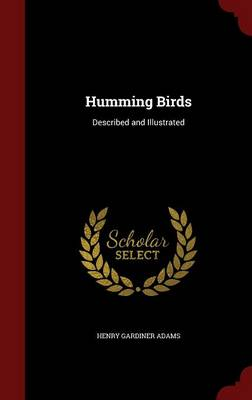 Humming Birds Described and Illustrated by Henry Gardiner Adams