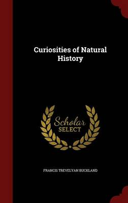 Curiosities of Natural History by Francis Trevelyan Buckland