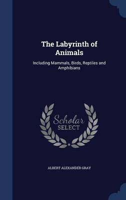 The Labyrinth of Animals Including Mammals, Birds, Reptiles and Amphibians by Albert Alexander Gray