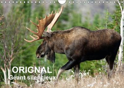 Orignal. Geant Silencieux L'Orignal du Canada au Fil des Quatre Saisons by Philippe Henry