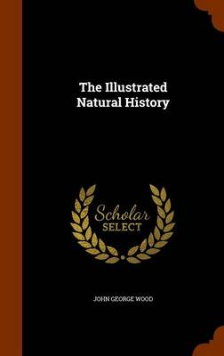 The Illustrated Natural History by John George Wood