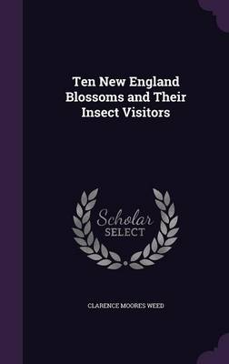Ten New England Blossoms and Their Insect Visitors by Clarence Moores Weed